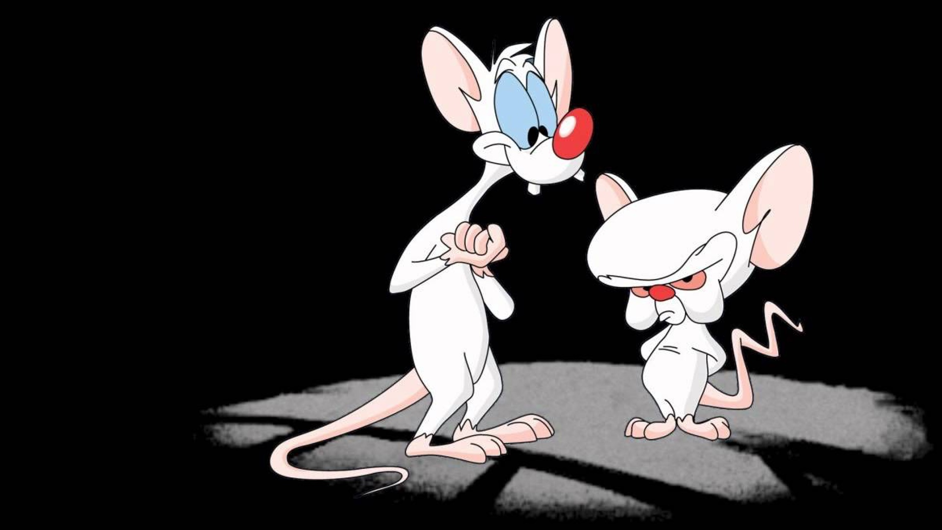 Artists Take On What A Live Action Pinky And The Brain Might Look