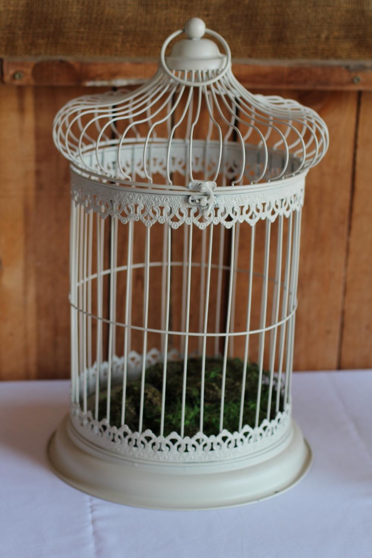#112 - White Birdcage