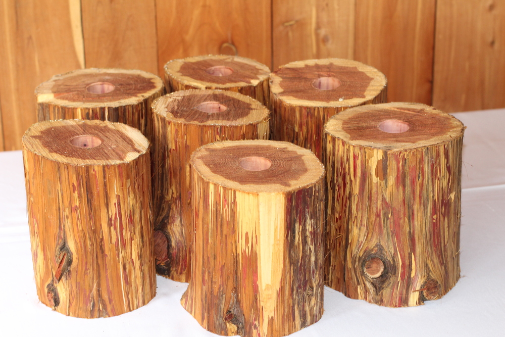#127 - Hollowed Out Cedar Pieces