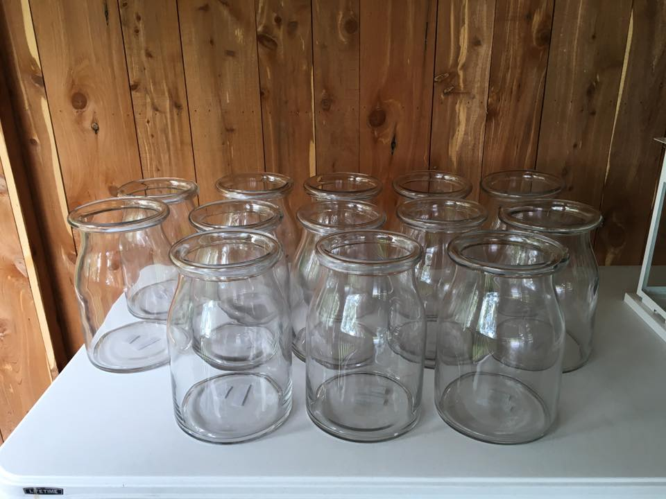 #162 - Large Clear Vases  Qty (13)