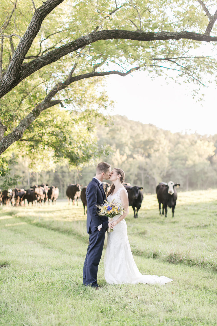 Farm Weddings in St Louis Roundup — Haue Valley We look forward to playing