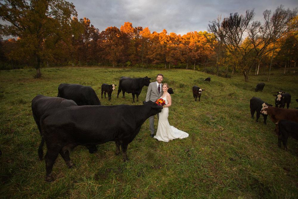 haue valley Todd Studios Photography