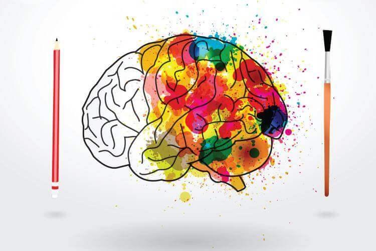cerebro-pintado-de-colores.jpg