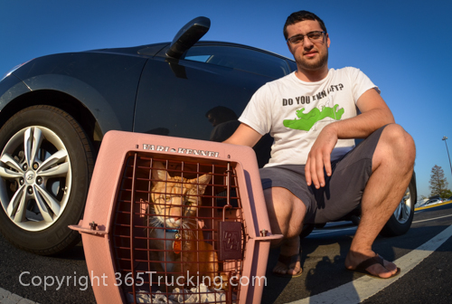 Pet_Transport_Zorro_Pauly_060614-398.jpg
