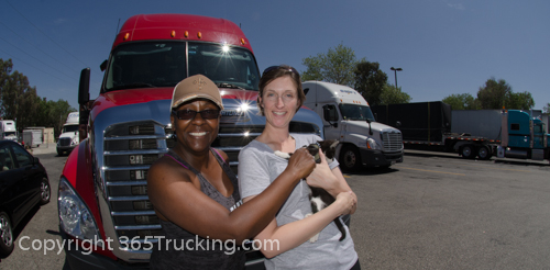 Pet_Transport_Zorro_Pauly_060614-14.jpg