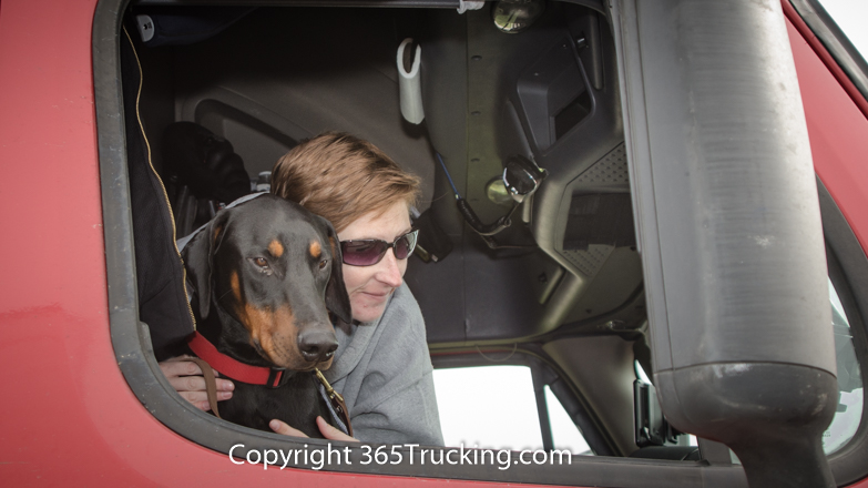 Pet_Transport_111914-131.jpg