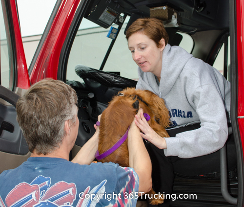 Pet_Transport_101114_Charlie-14.jpg