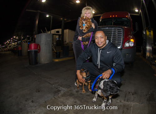 Pet_Transport_101114_Charlie-79.jpg
