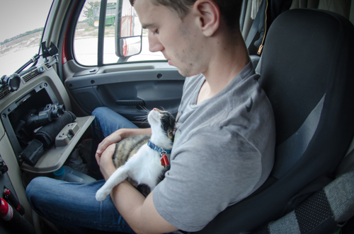 Pet_Transport_Kit_Kat_083114-7.jpg