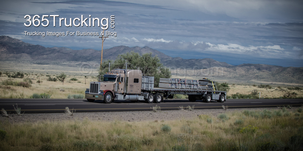 Bereavement Logistics: Problems of the Trucking Life- A Joey
