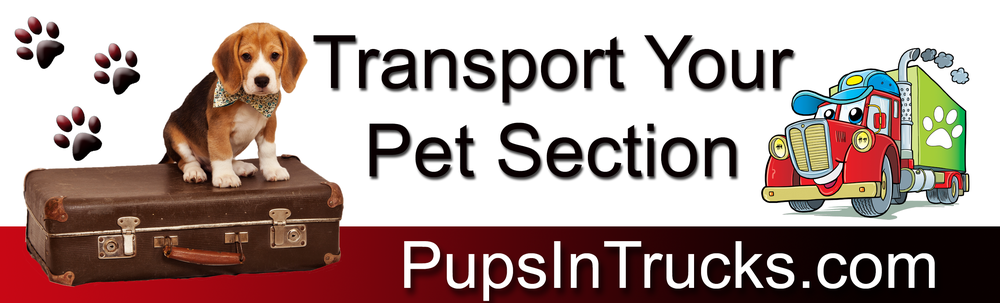 Pet_Transport_092915_21.png