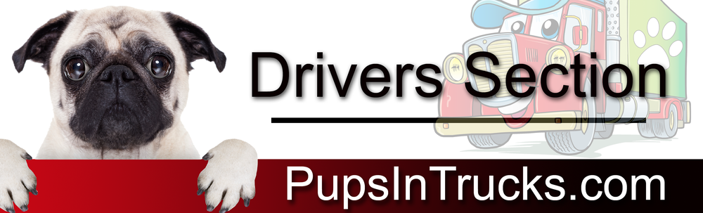 Pet_Transport_092915_Driver_2.png