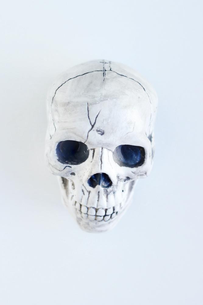 plastic skull from target.JPG