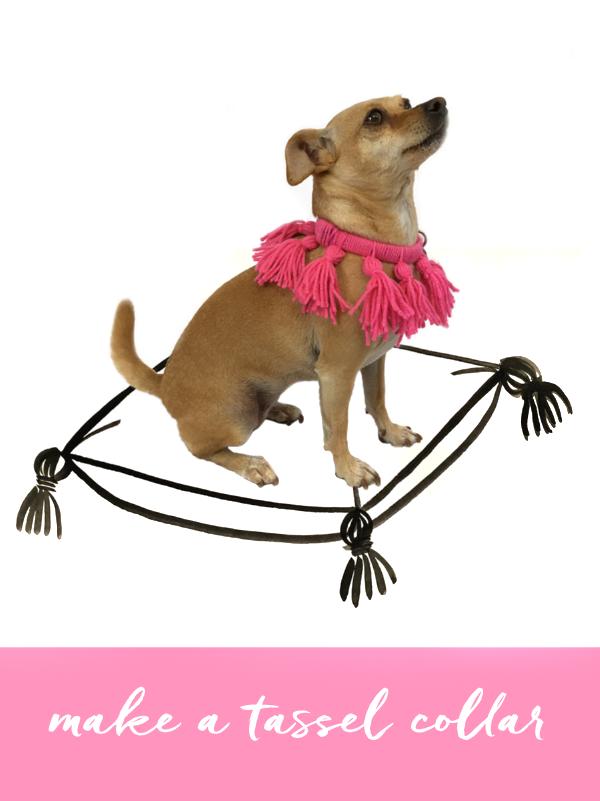 diy-dog-tassel-halloween-costume.png