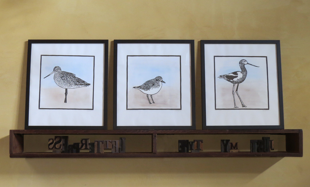All three inthe shorebird series.