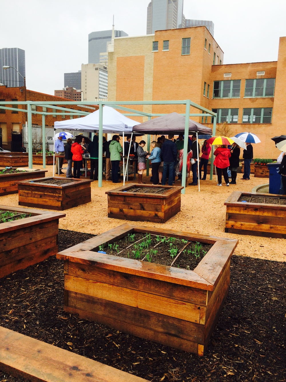 The community garden is the backyard of historic 508 Park.