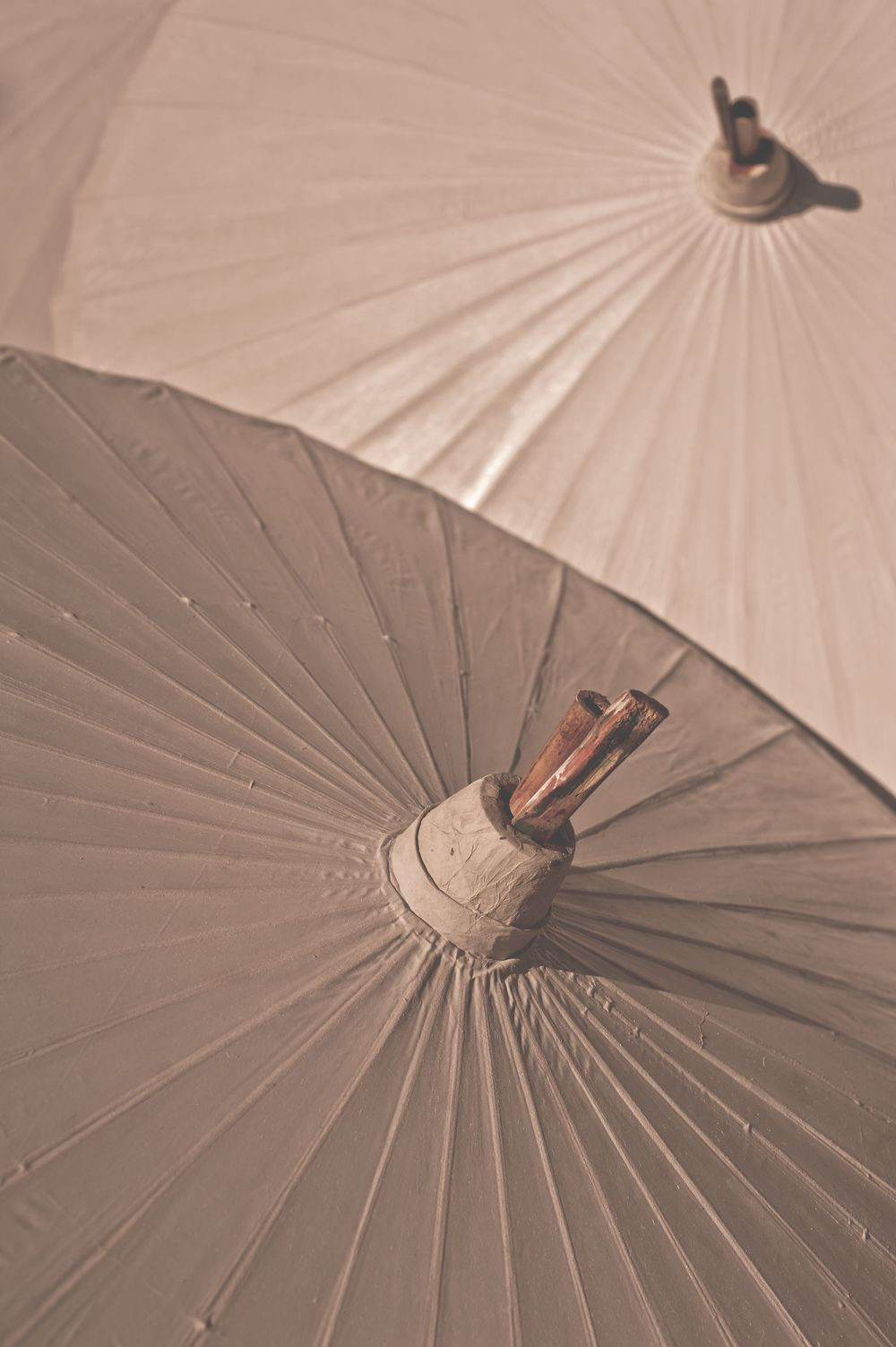 Hand painted parasols drying in the sun
