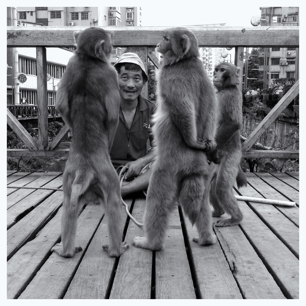 Monkey Business. A traveling street show, Gangding, Guangzhou, September 2014