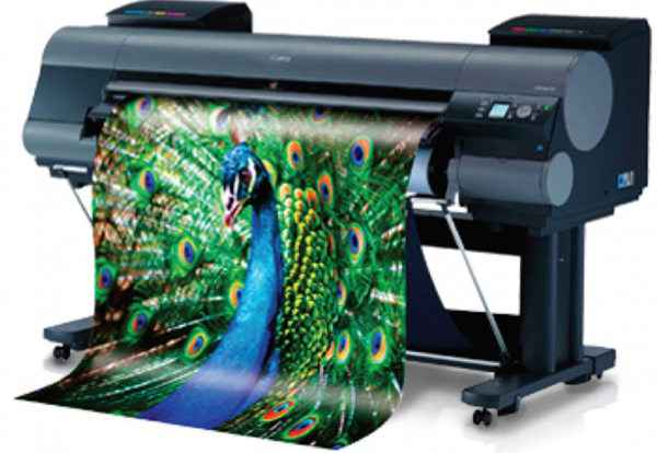 Printing & Picture Framing -