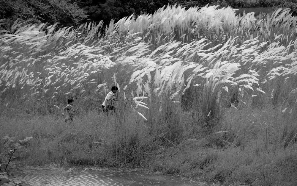 Ode to Film | #42: Pather Panchali