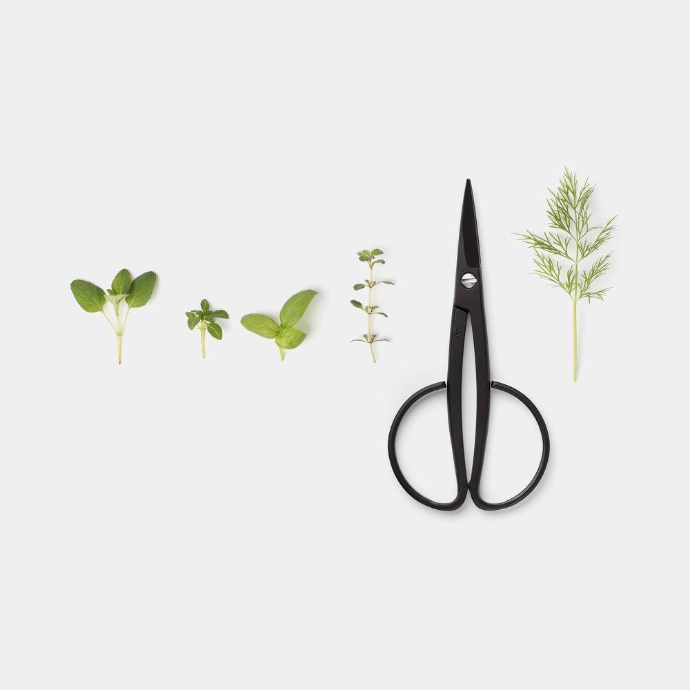 Kobayashi Harvester Scissors