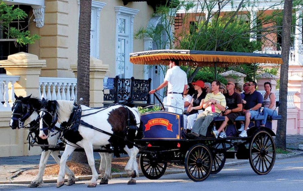 Tours:Historical, Walking, Boat, Carriage or even Vineyard. -