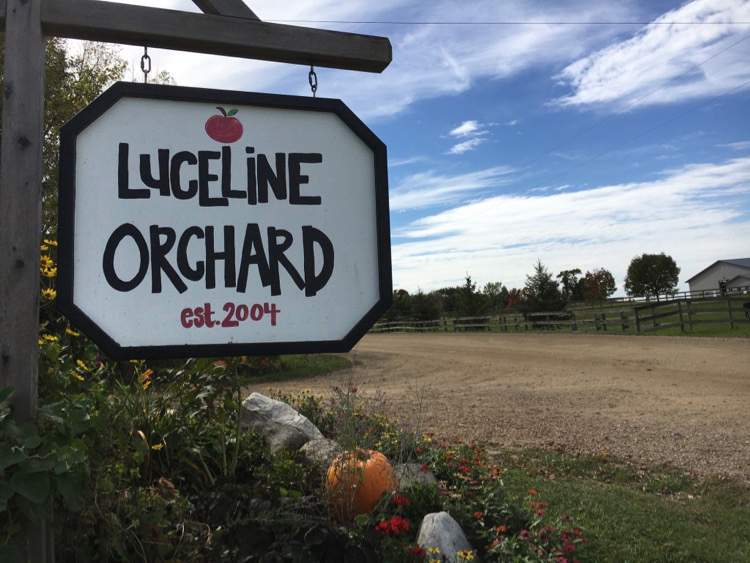 OrchardSign.jpg