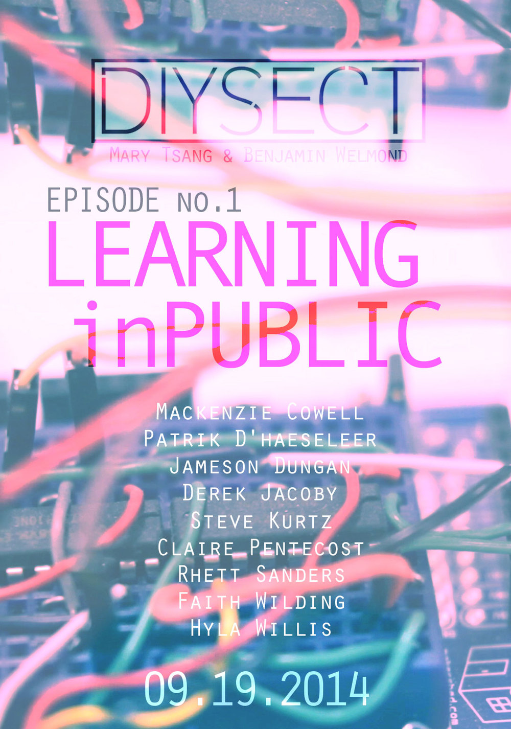 diysect01learninginpublic