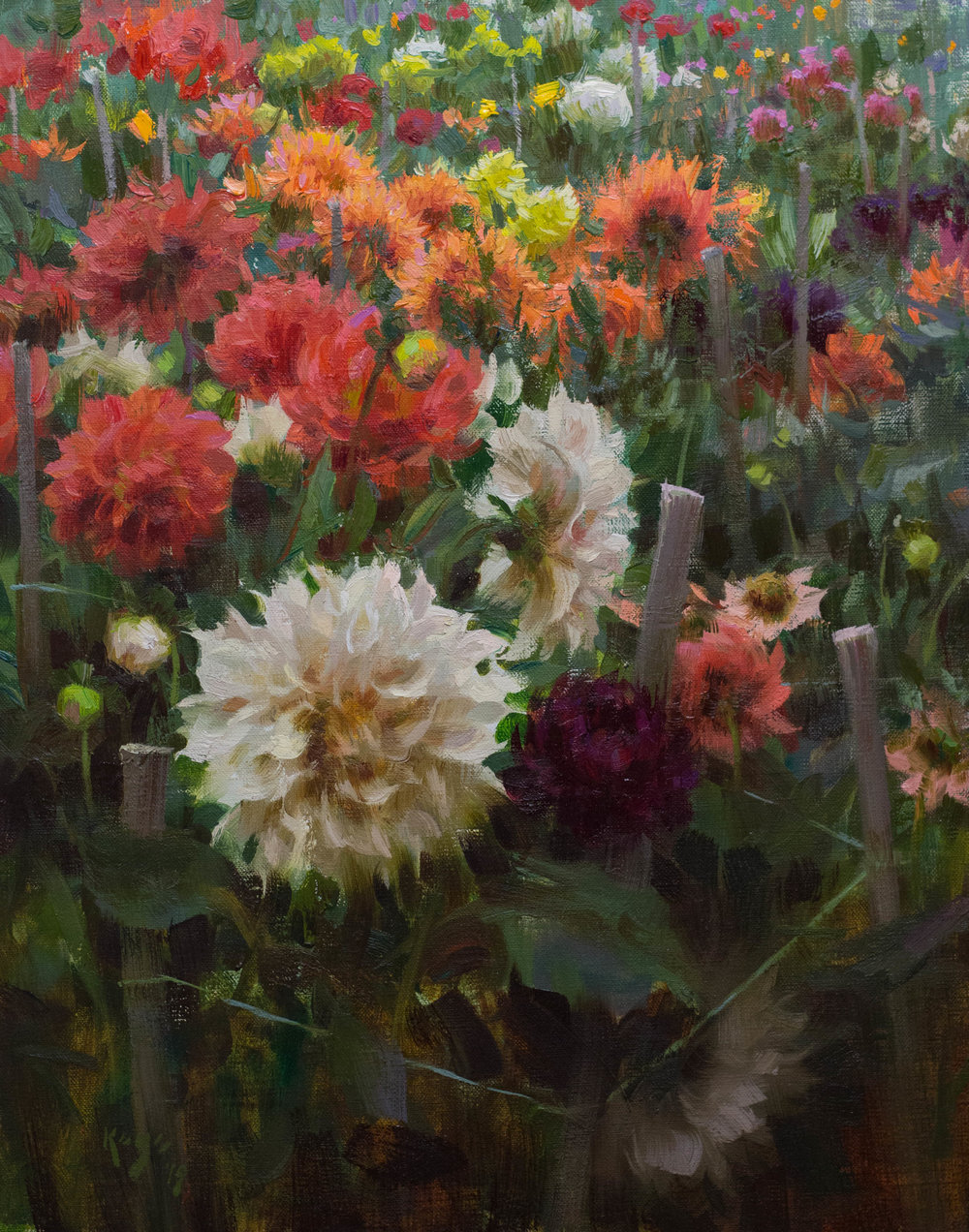 Jardin Dahlia, 20 x 16 inches 2019 (1 of 1).jpg