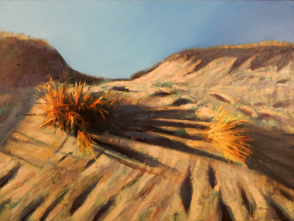 Tim Tolman: Wesport Dunes