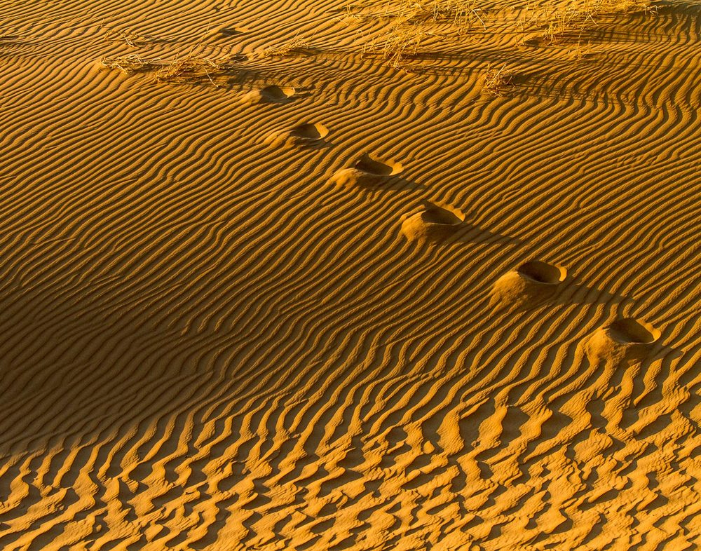 Sands of time, footprints