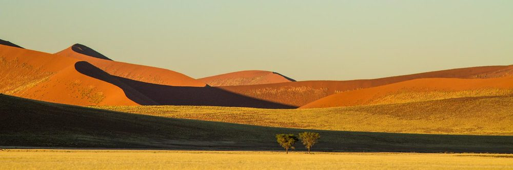 African Panoramic Landscape