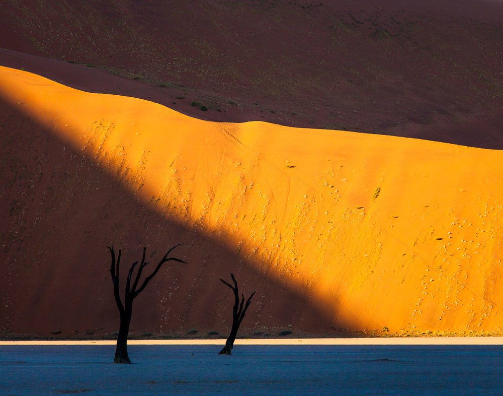 Dead Vlei Light