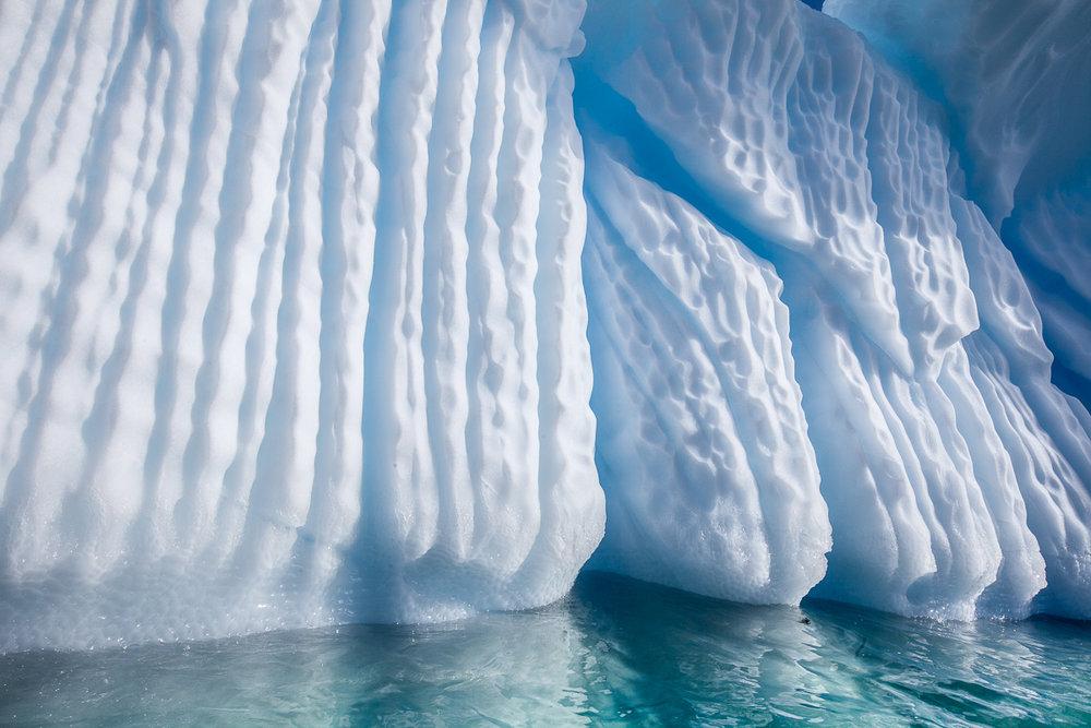 antarctica_web-11.jpg