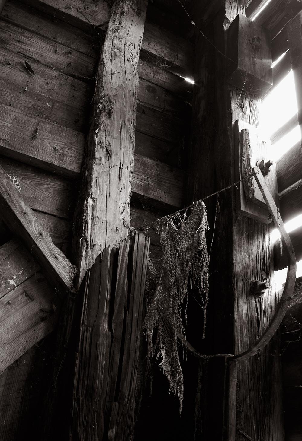 Myakka_barn_corner_BW_06.jpg