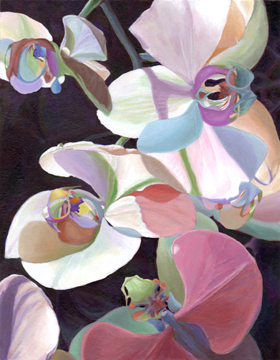 Orchid Fantasia