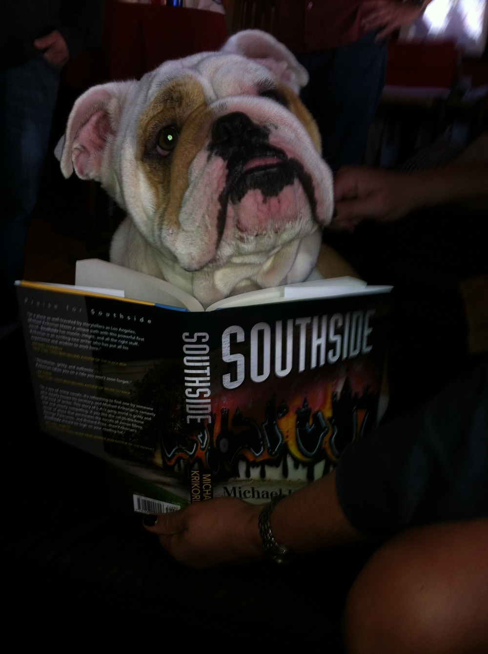 "Winston does NOT like to be interrupted when reading ""Southside"""