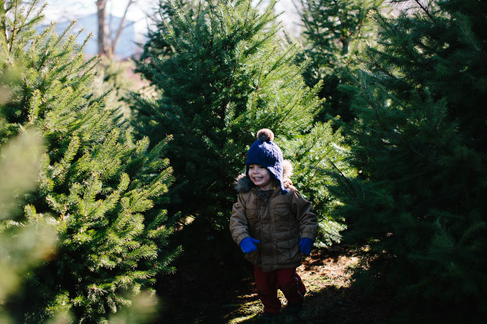 O Christmas Tree-5.jpg