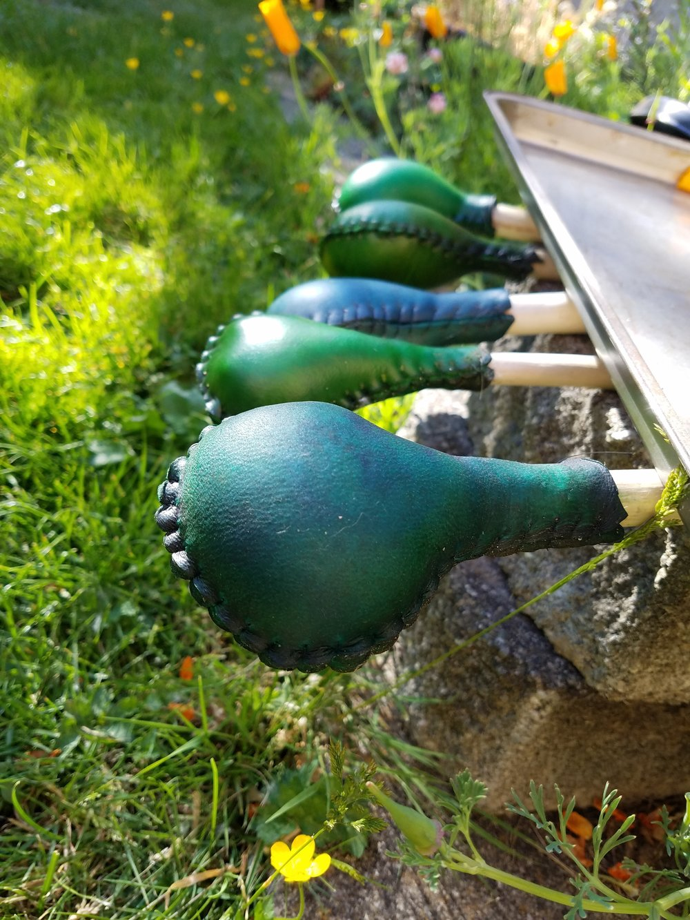 Emerald Green Rattles Drying in the Sun