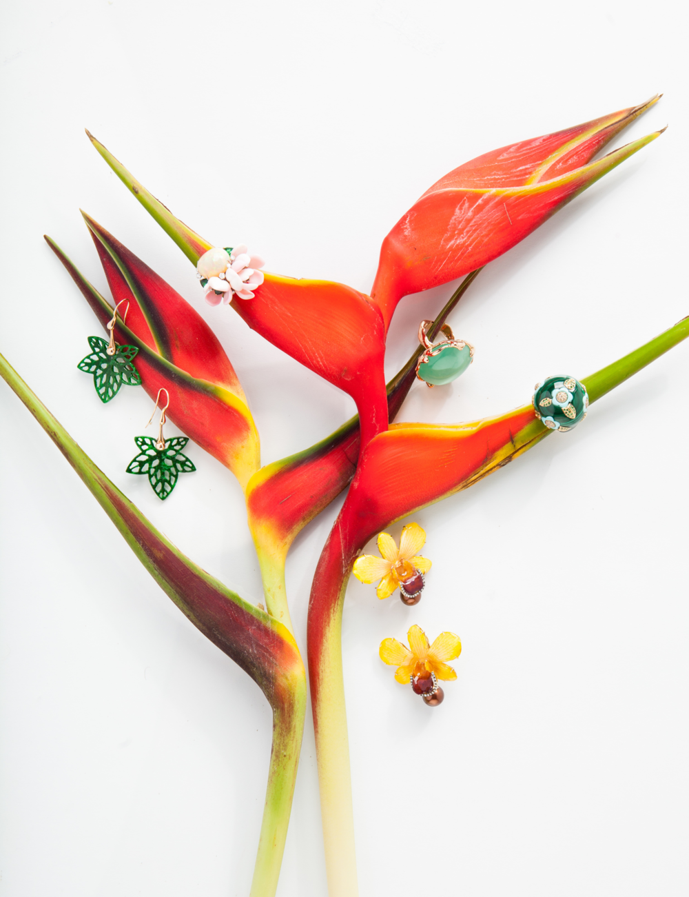 birds_of_paradise_plants_playful_jewelry_naples_illustrated_vanessa_rogers_photography