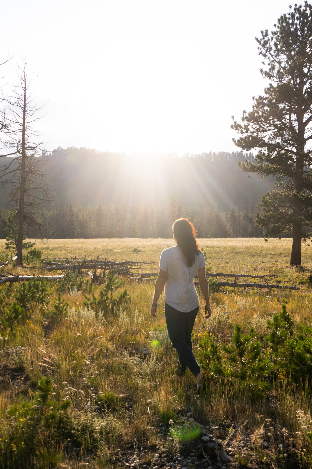 Walking into the Sunset. Rocky Mountain National Park / Glacier Basin Campground 2018