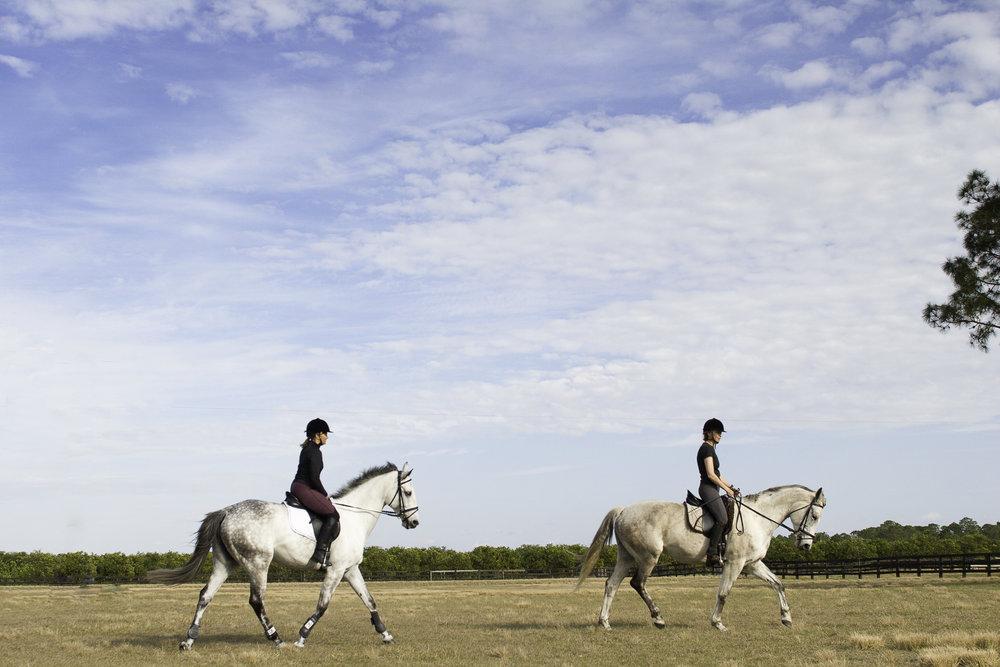 women_riding_horses_MG_0827_2.jpg