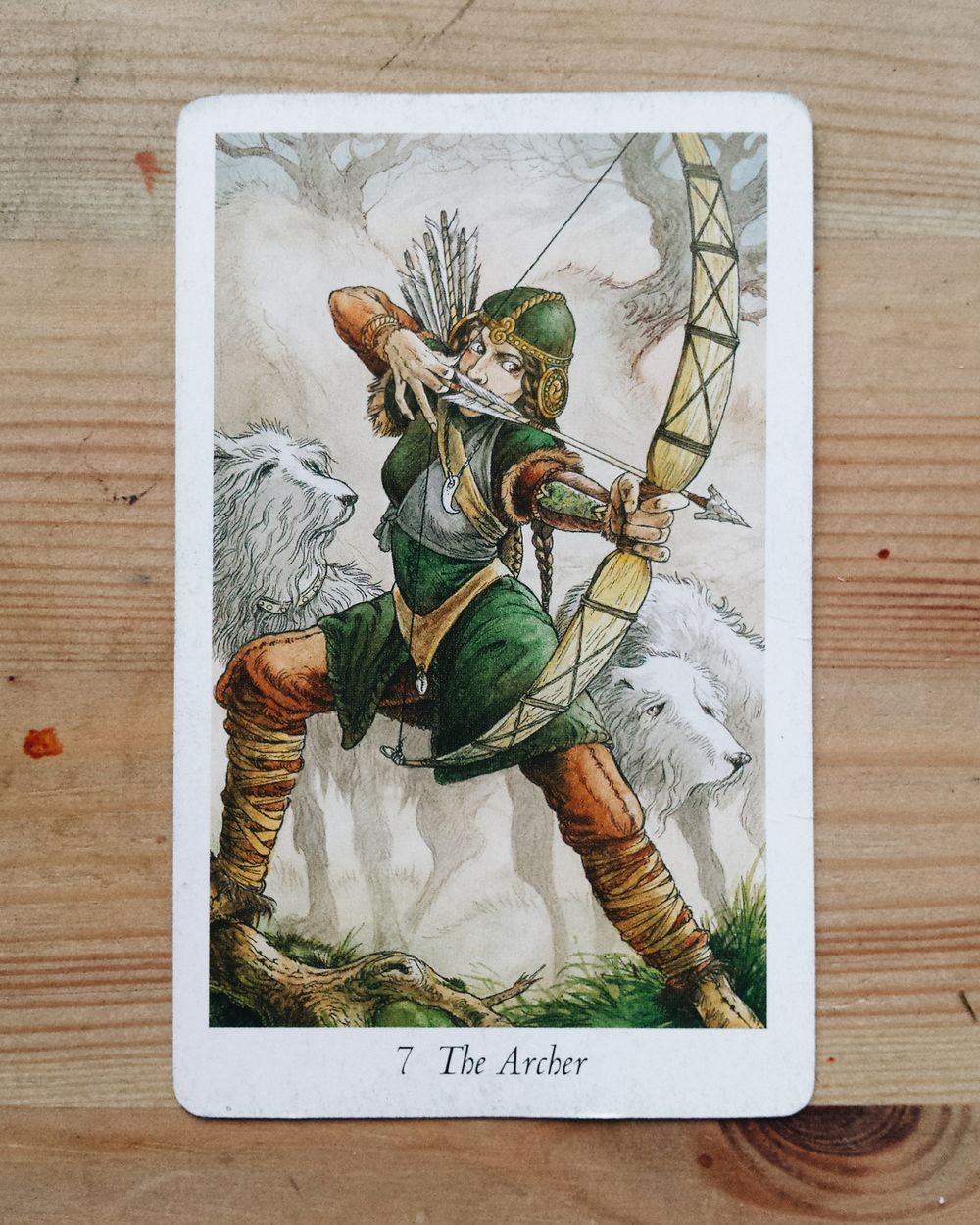 wildwood tarot the archer