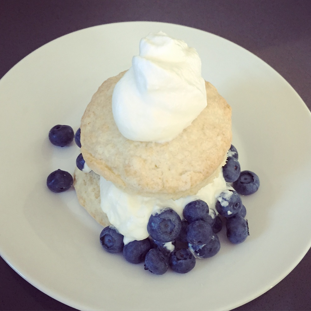 blueberry_shortcake_hillarywith2Ls.jpg