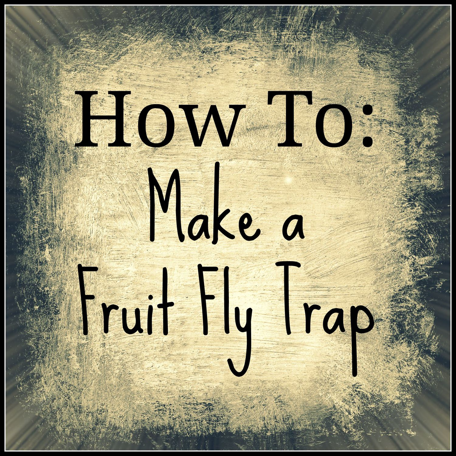 How to Get Rid of Fruit Flies — Hillary with two Ls (please)