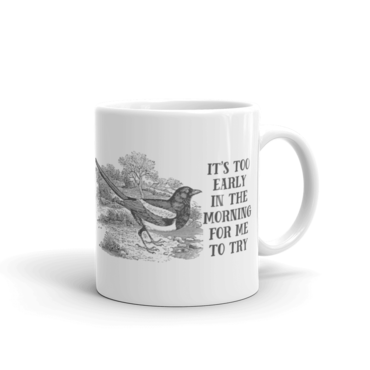 {image: effinbirds.com}