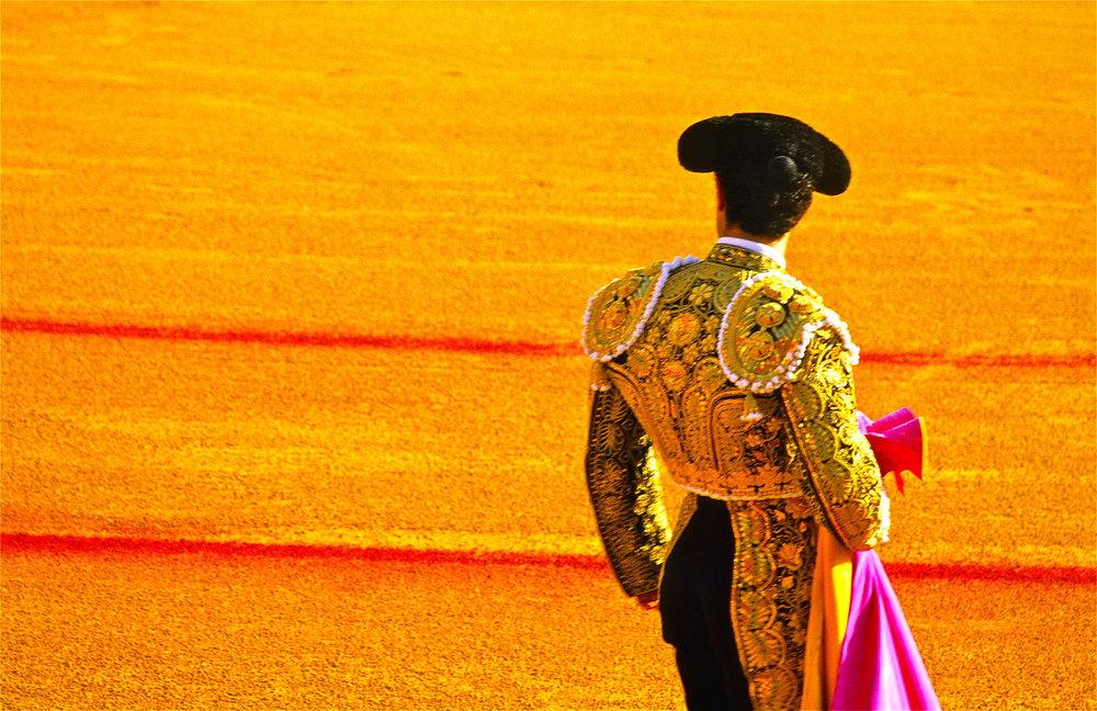 Rose Hartman - Matador, Sevilla.jpg