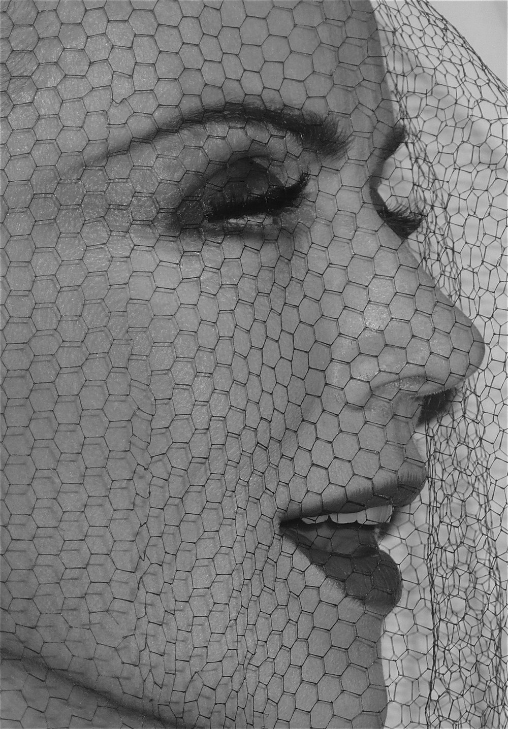 Rose Hartman - Veiled Daphne.jpg