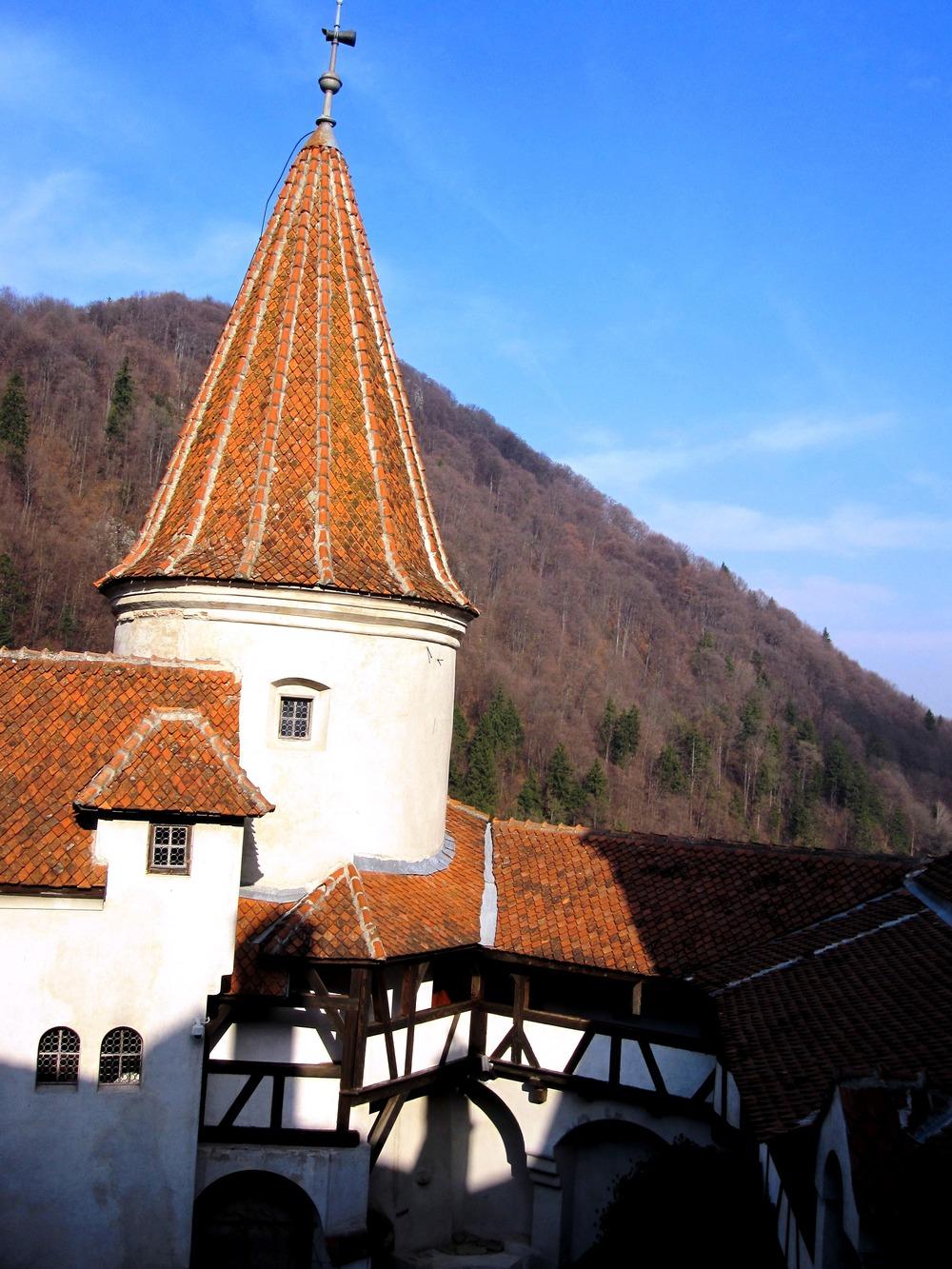 Bran Castle Brasov Romania