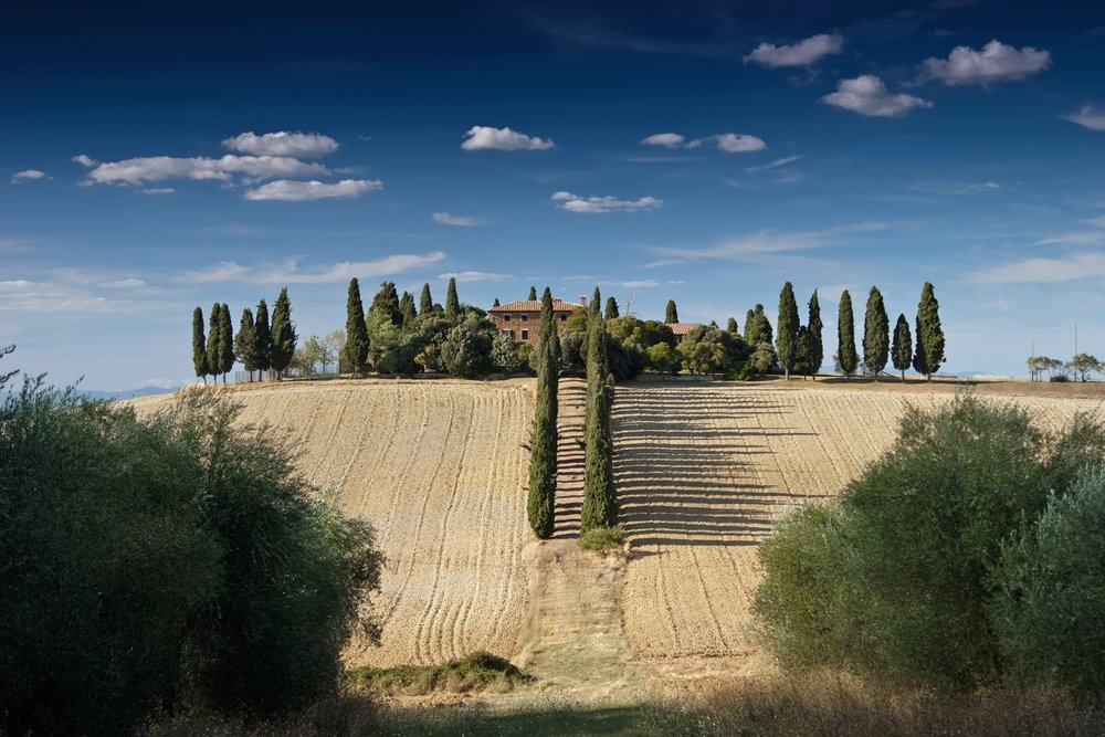 Ever wondered about the road not taken? Tuscany